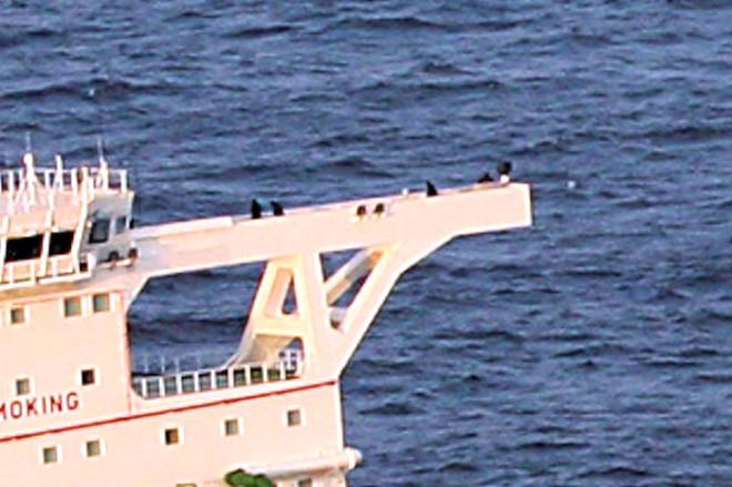 İşte Somalili Korsanlar