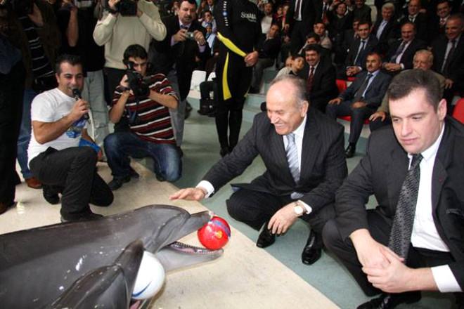 İstanbul Dolphinarium Açıldı