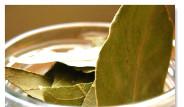 Galeri: Defne Yaprağının Faydaları