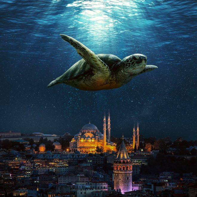 Başarılı grafikerden büyüleyici İstanbul tasarımları