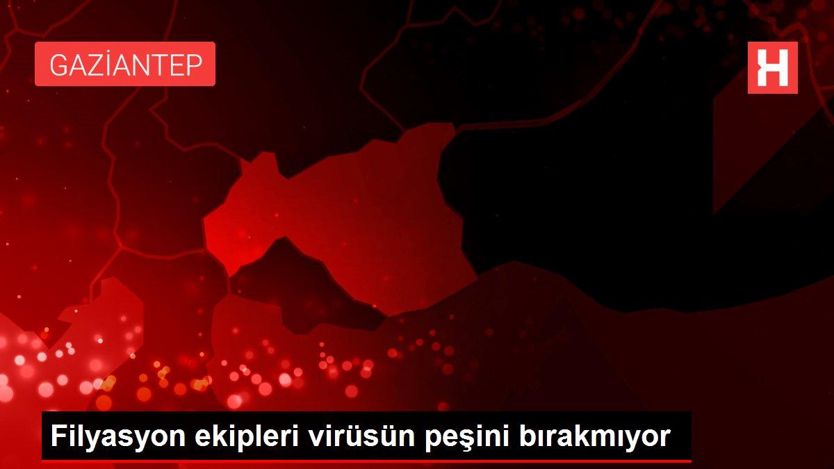Filyasyon ekipleri virüsün peşini bırakmıyor
