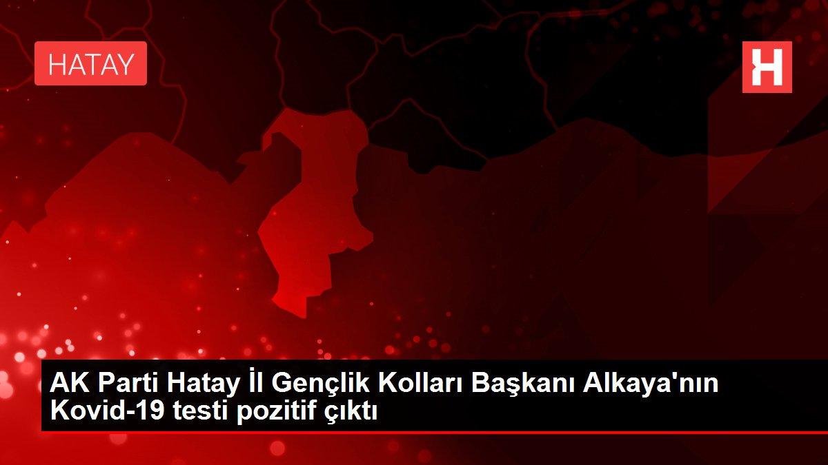 Son dakika... AK Parti Hatay İl Gençlik Kolları Başkanı Alkaya